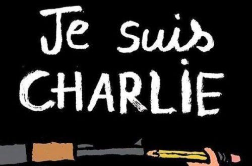 Article : [ Je ne suis pas Charlie ; je ne suis pas Terroriste non plus ]