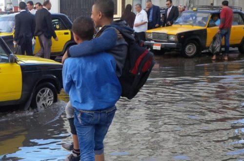 Article : La pluie teste Alexandrie